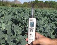 Hidrómetros de la serie PCE-555 comprobando de la humedad ambiental de un cultivo.