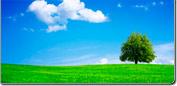 Instrumentos de medida para el medio ambiente