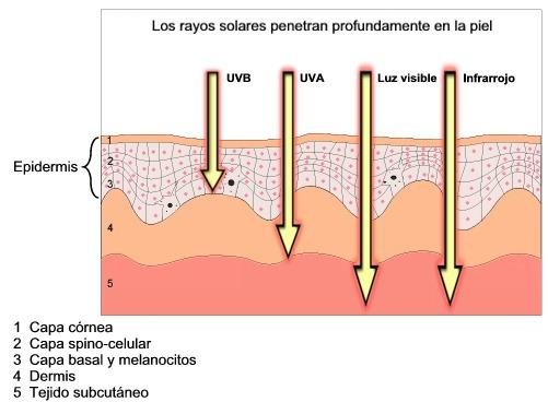 Medición de la influencia de la radiación sobre la piel con el dosímetro de radiación UV.