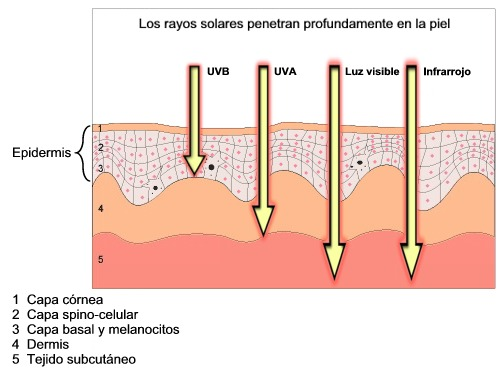 Medición de la influencia de la radiación sobre la piel con el medidor de radiación UV.