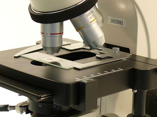 Microscopio con grandes objetivos